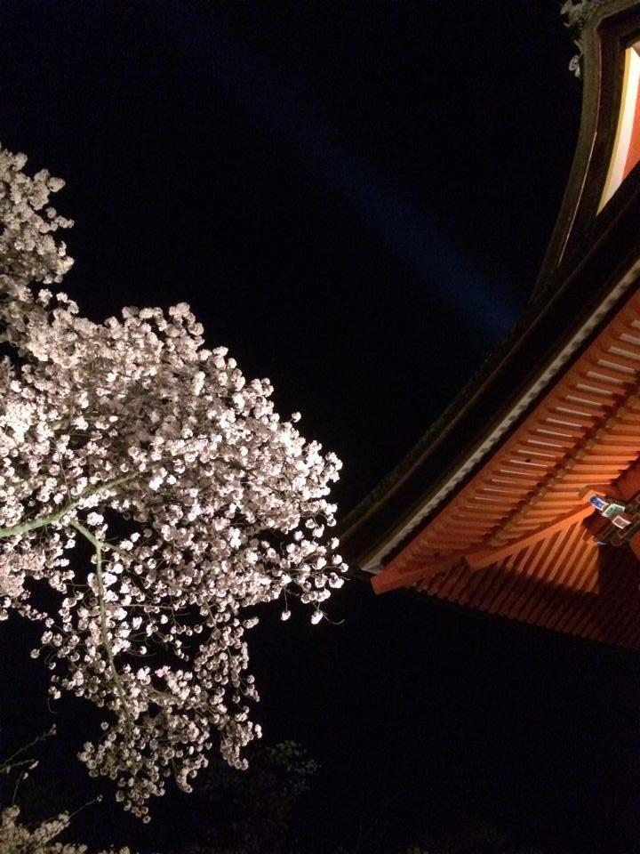 清水寺 夜間拝観 2014