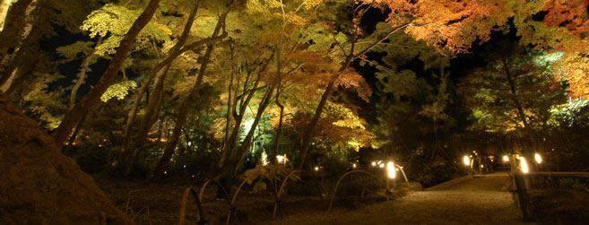 『嵯峨・嵐山』
